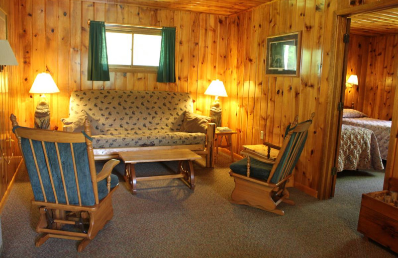 Cabin living room at Golden Eagle Lodge.
