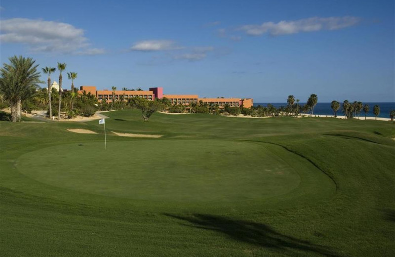 Golf course at Melia Cabo Real.