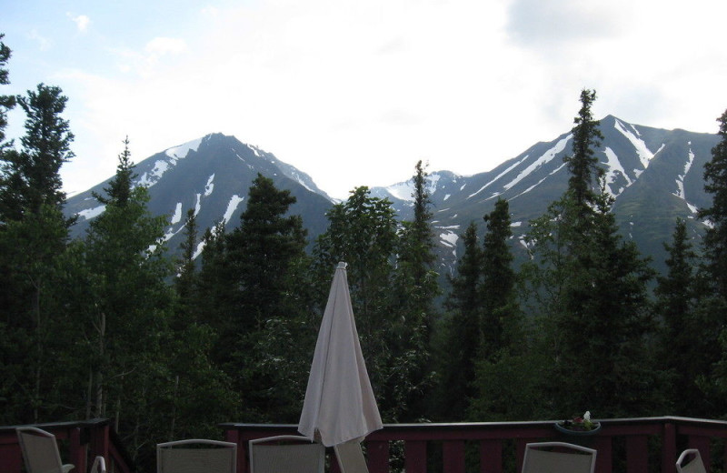 Mountain view near Denali Perch Resort.
