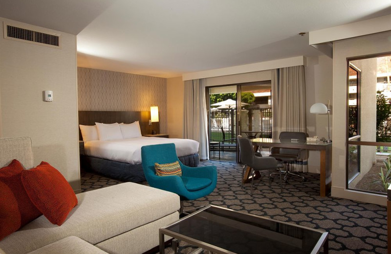 Junior Suite at Hilton Palm Springs Resort.