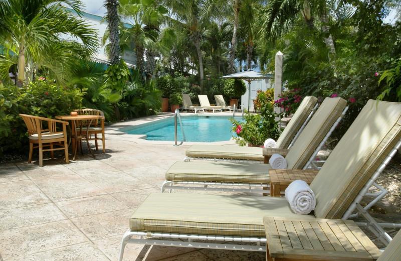 Outdoor pool at Paradera Park Apartments.