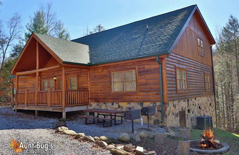 Pigeon Forge Vacation Rentals Cabin Majestic Waters 575 Aunt