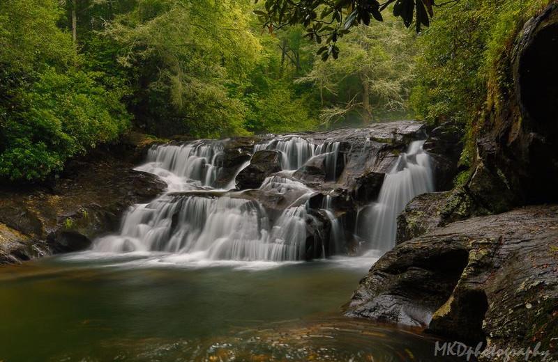 Waterfall near Forrest Hills Resort.