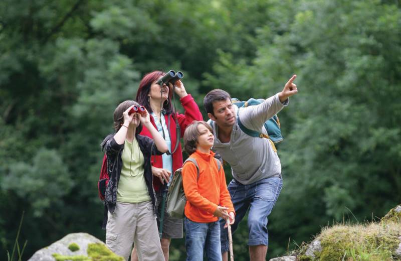 Family bird watching at Stowe Mountain Lodge.