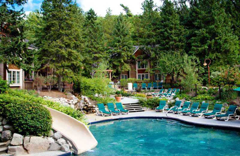Outdoor pool at The Homestead.