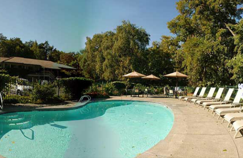 Outdoor pool at Jack London Lodge.