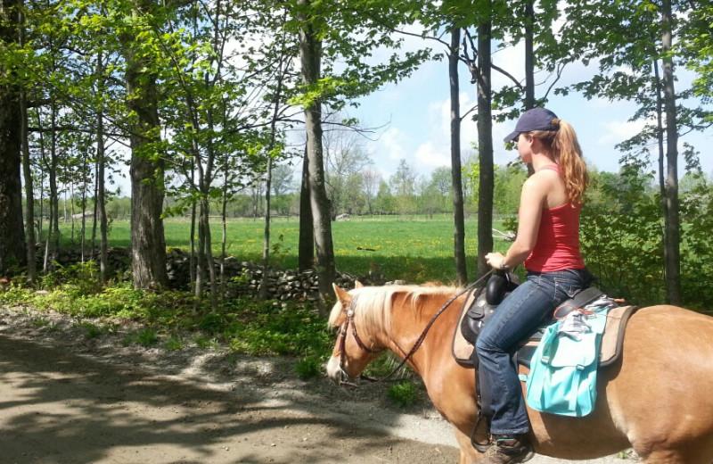 Horseback riding at Stowe Mountain Lodge.