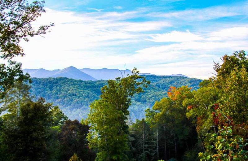 Mountain view at Mountain Shadows Resort.