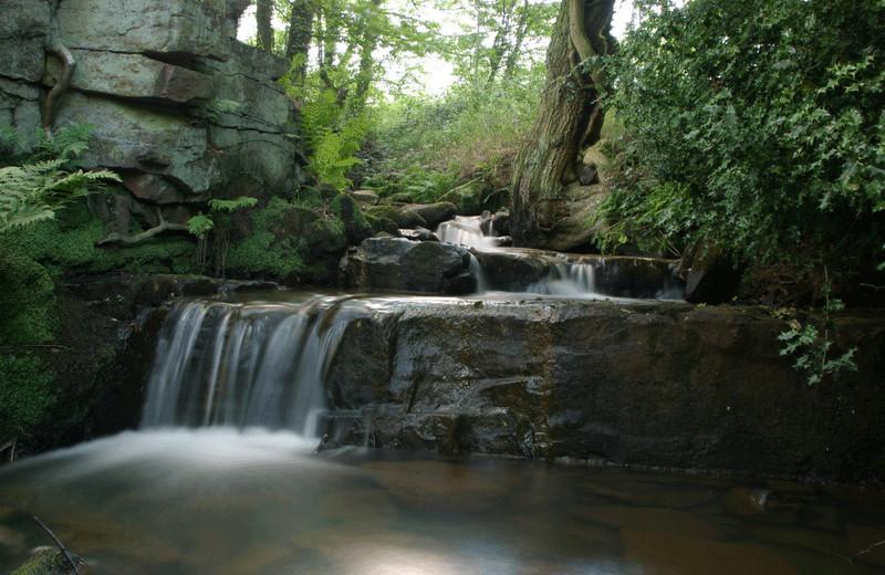 Waterfall at Honeymoon Bay Lodge & Retreat.