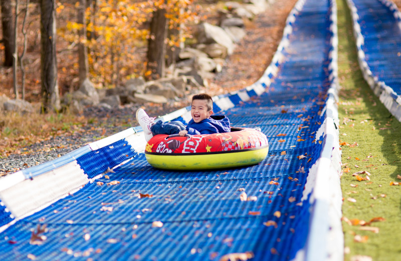 Mountain slide at Rocking Horse Ranch Resort.