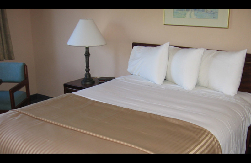 Guest bedroom at Auburn Guest House.