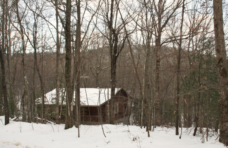 Cabins range in size from 1, 2, 8, 12 or 16 rooms in size!  Rent your own private hotel.