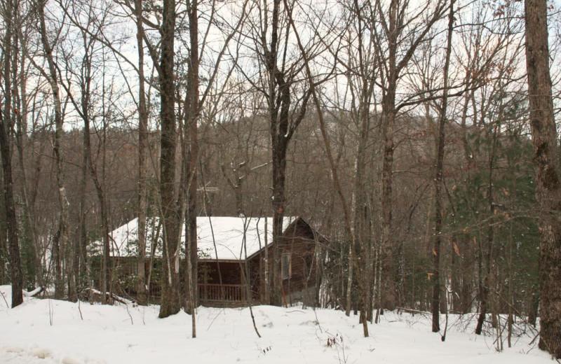 Cabin at Forrest Hills Resort.