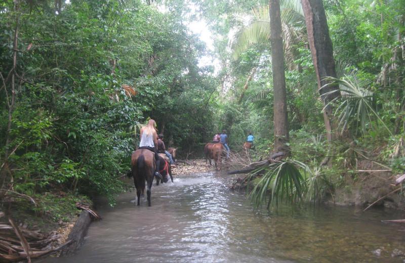 Horseback riding at Banana Bank Lodge.