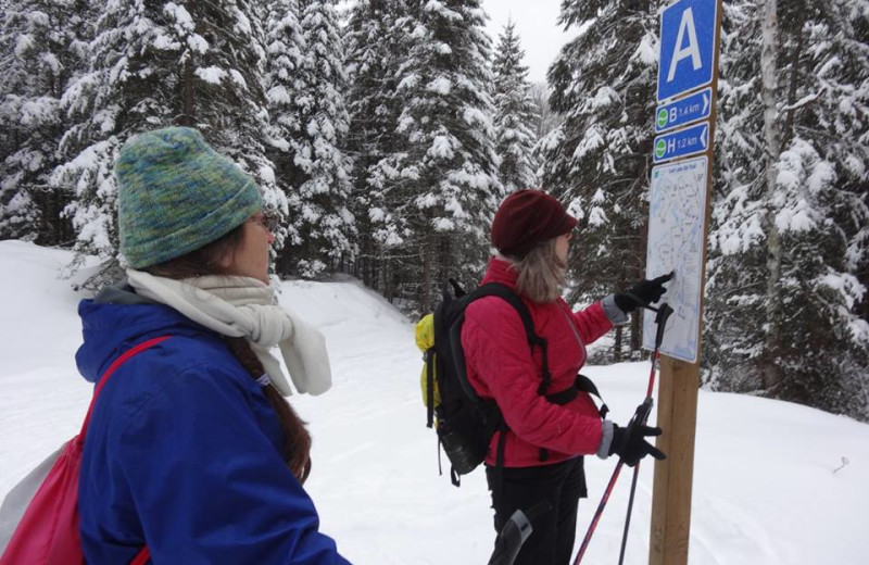 Skiing at Wolf Den Hostel and Nature Retreat.