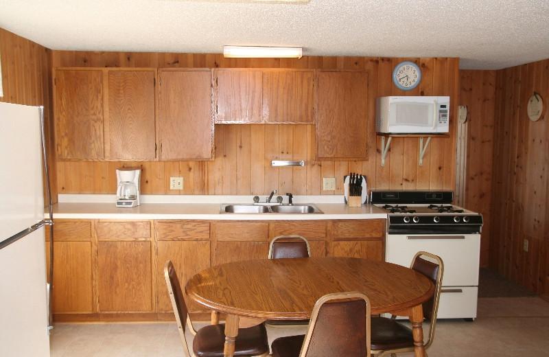 Cabin kitchen at Bay View Lodge.