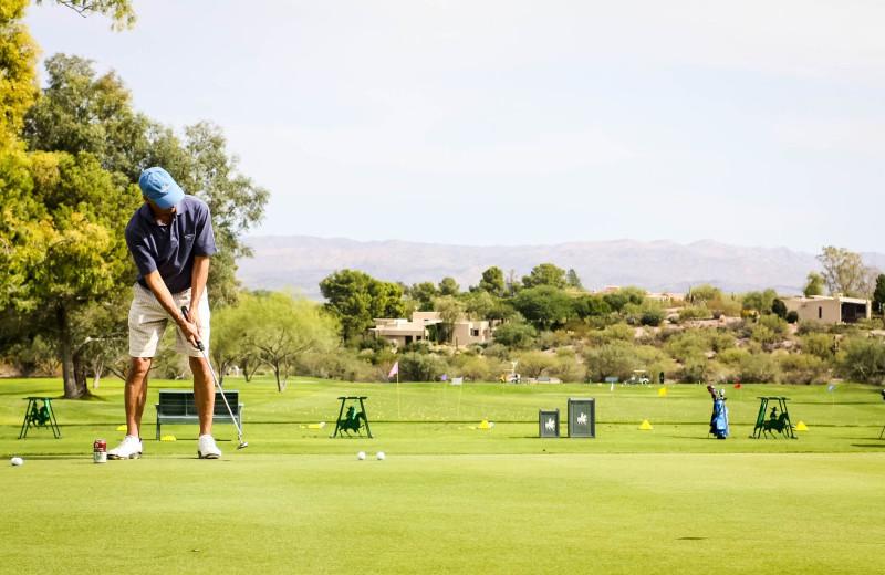 Golf at Rancho De Los Caballeros.