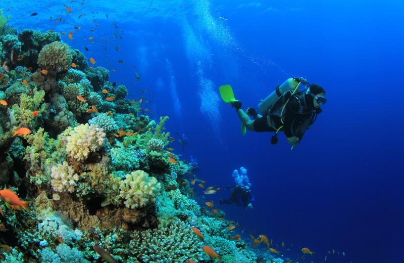 Diving at ValGal Vacation Rentals.