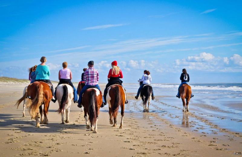 Horseback Ridding On Beach at Hatteras Realty