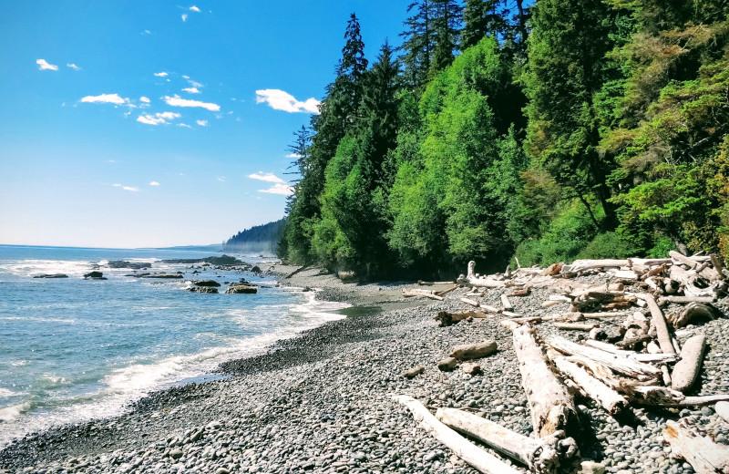 Beach near Ocean Wilderness Inn & Spa Retreat.