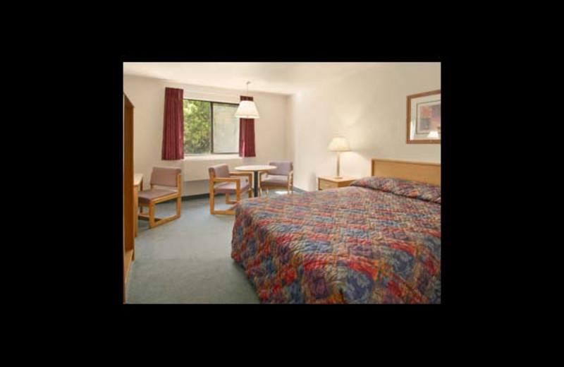 Guest room at Super 8 Motel - Bremerton.