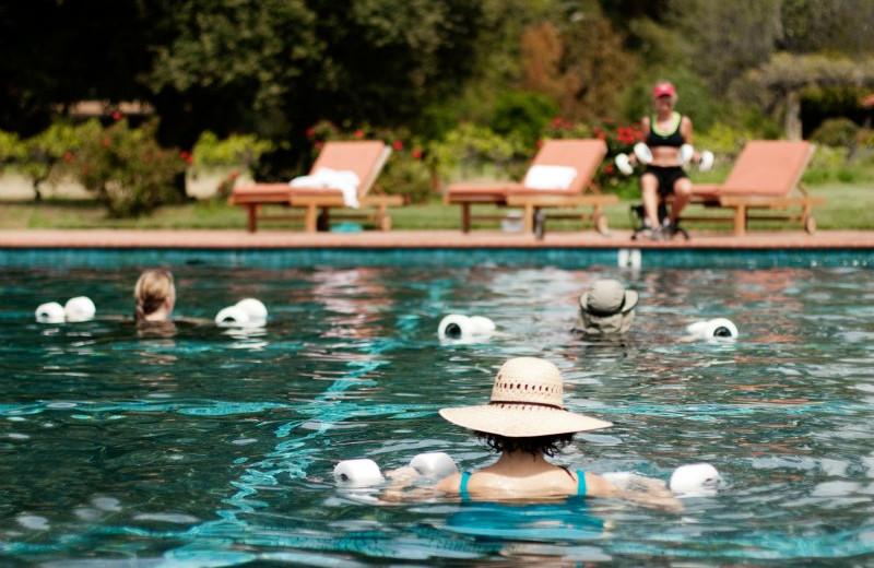 Outdoor pool at Rancho La Puerta.
