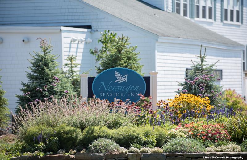 Welcome to Newagen Seaside Inn.