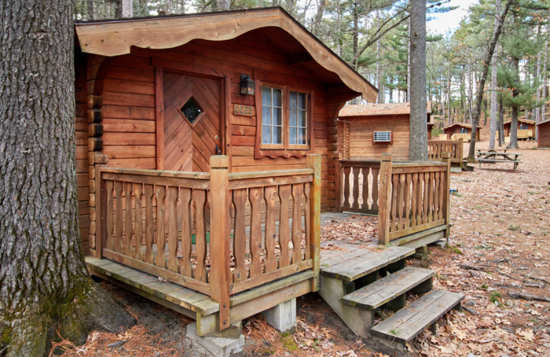 Cabins at Yogi Bear's Jellystone Park Warrens.