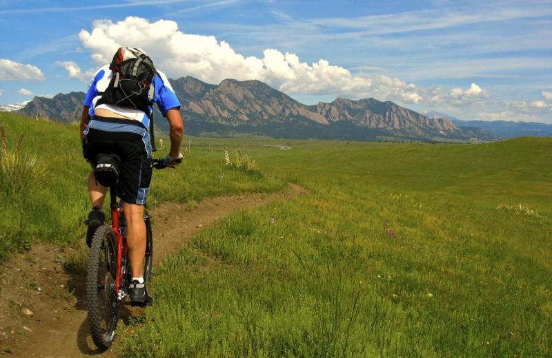 Biking near Boulder Mountain Lodge.