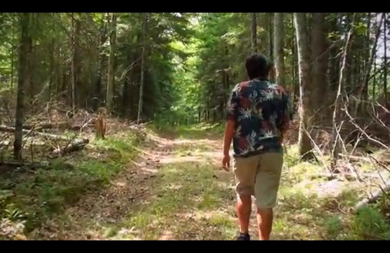Hiking at Evergreen Lodge.