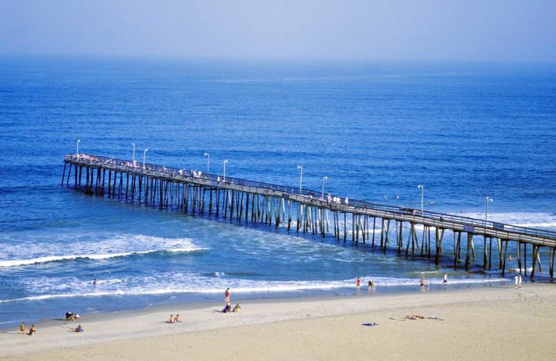 Beach at Dolphin Run Condominium Association. Inc.