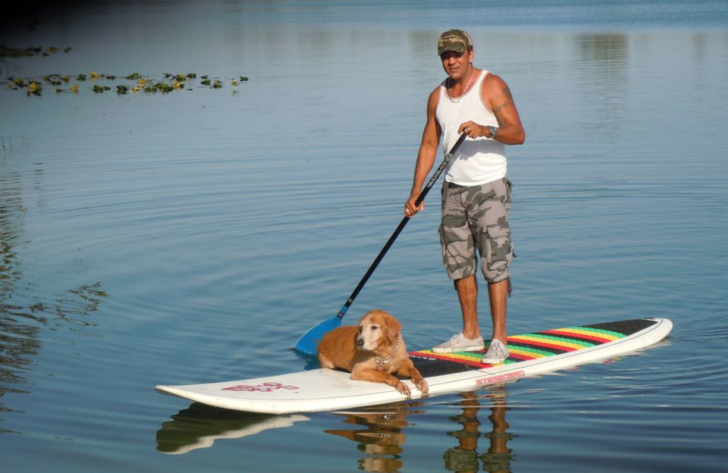 Paddle board at Beach Vacation Rentals.