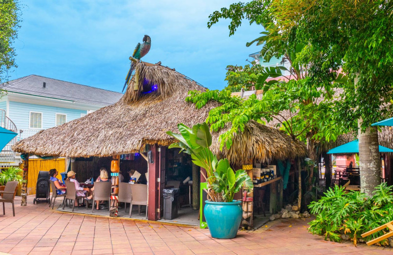 Tiki bar at Lighthouse Resort Inn & Suites.