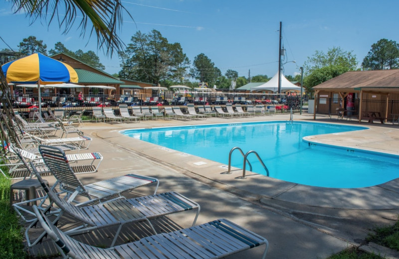 Outdoor pool at Lone Star Jellystone.