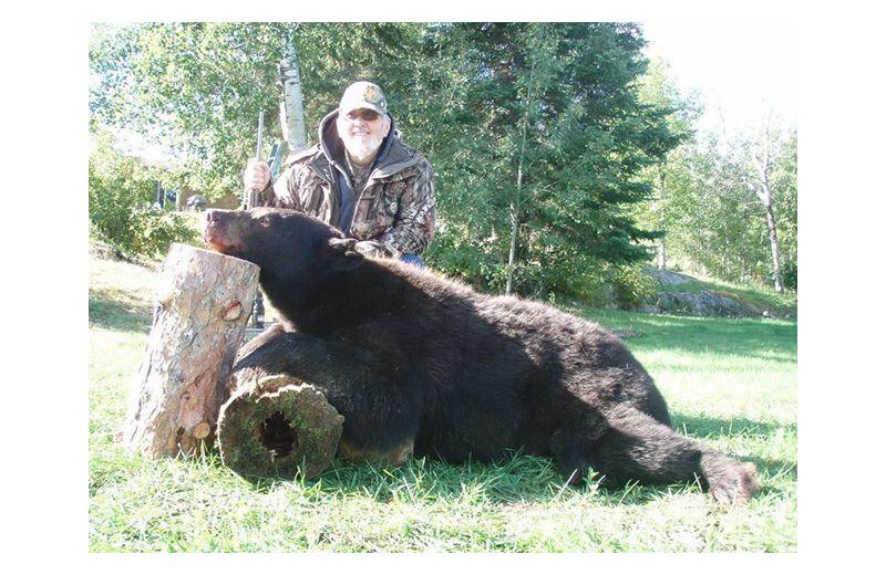 Bear hunting at Stokes Bay Resort.
