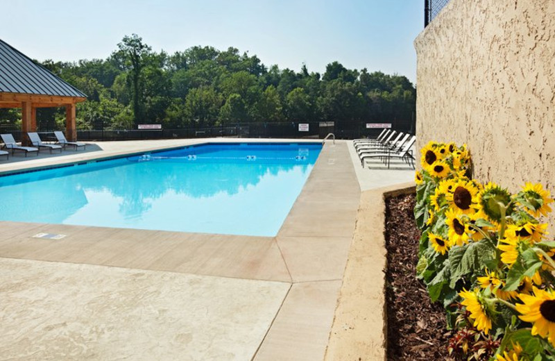 Outdoor Pool at the Crowne Plaza Resort Asheville