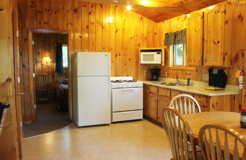 Cabin kitchen at Golden Eagle Lodge.