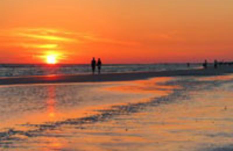 Tropical Breeze Resort Sarasota Fl Resort Reviews