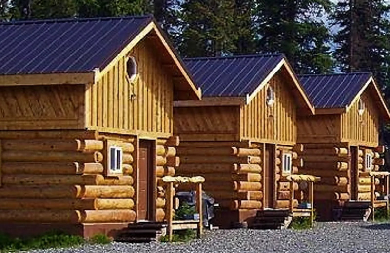 Cabin exterior at Sleepy Bear Cabins.