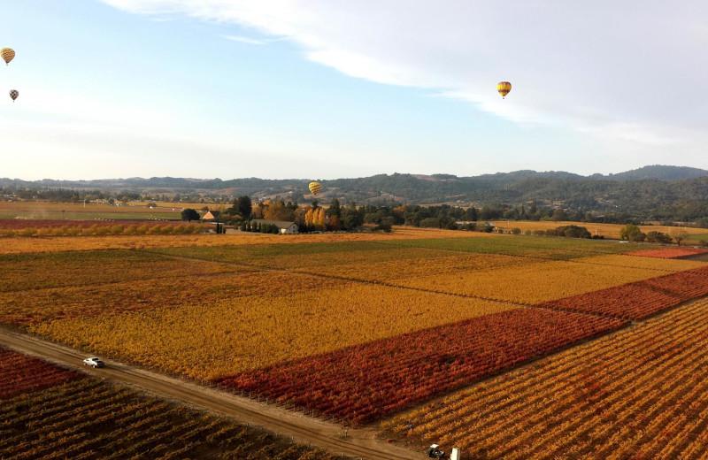 Hot air balloon rides near 1801 First.