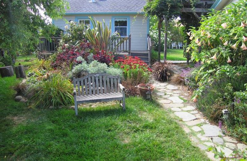Garden at Pescadero Creek Inn.