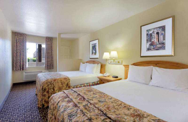 Guest room at Days Inn & Suites Tempe.