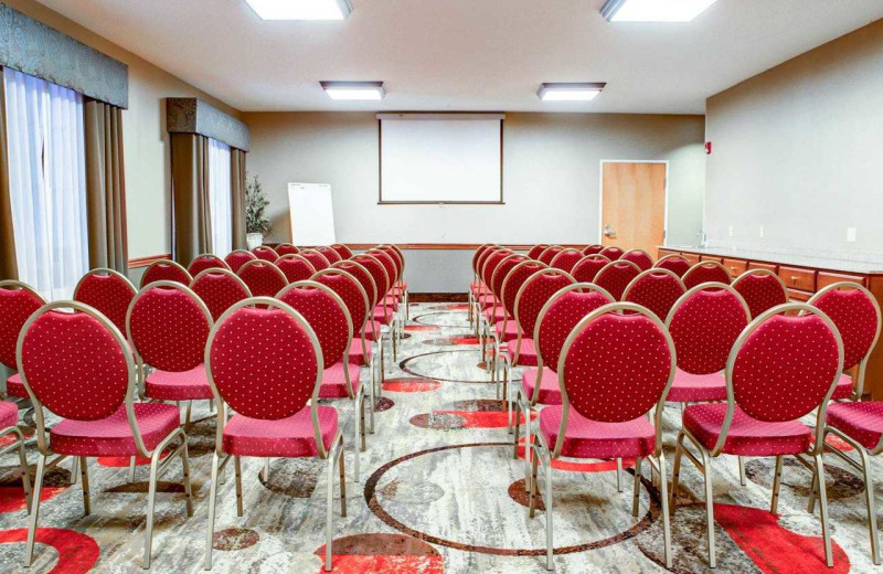 Meeting room at Comfort Suites Stevensville - St. Joseph.