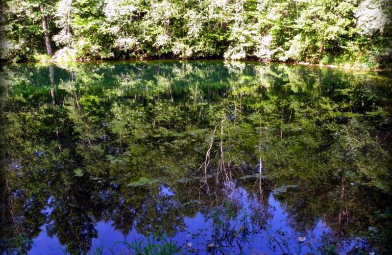 Lake at Mount Pocono Campground