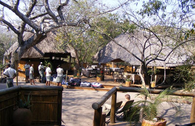 Exterior view of Tembe Elephant Park.