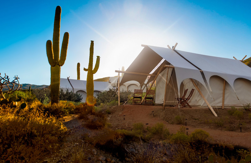Glamping at Tanque Verde Ranch.