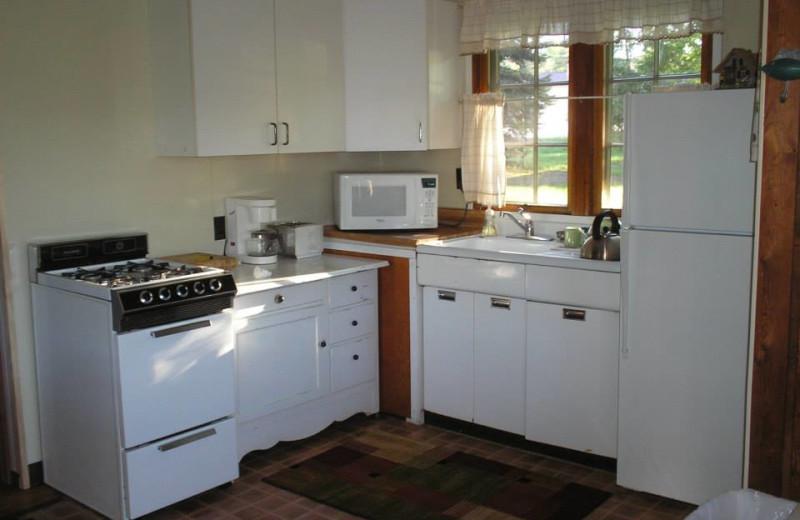 Cabin kitchen at Lake Leelanau Narrows Resort.