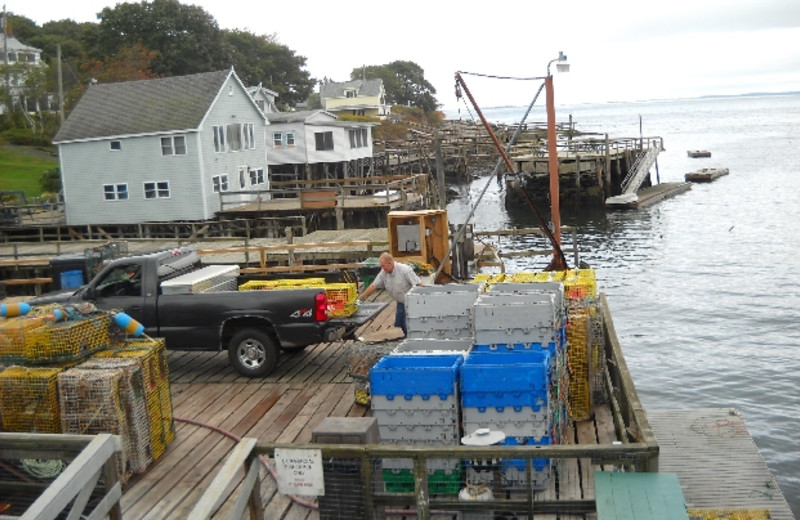 Fishing at Riverview Lobster Pound Cottages.