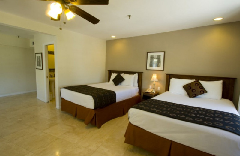 Guest Room at Beach Paradise Hotel