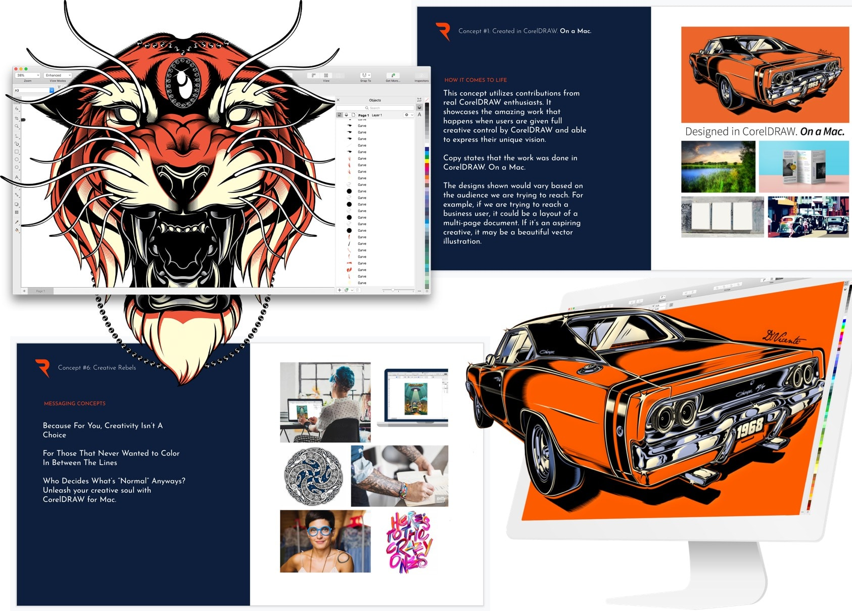 Select images from pitch deck and corelDraw vector art.
